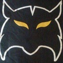 "Hixson High School - ""Wildcat"" Varsity Football"