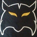 """Hixson High School - """"Wildcat"""" Jr Varsity Football"""