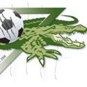 LSC - Gators