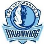 Meadowcreek High School - Boys Varsity Football
