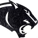 Carver High School - Boys' Varsity Basketball - New