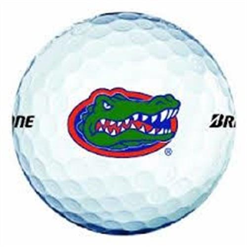Dickinson High School - Gator Golf