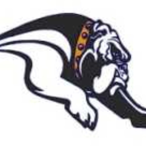 Mediapolis High School - Mediapolis Varsity Football