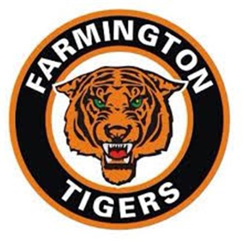 Farmington High School - Boys JV Ice Hockey