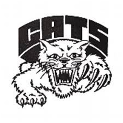Struthers High School - Struthers 8th Grade Girls Basketball
