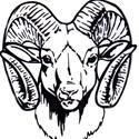 Madison Comprehensive High School - Varsity Girls Basketball