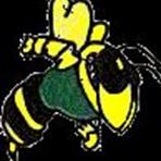 Bethel Township High School - Boys Varsity Basketball