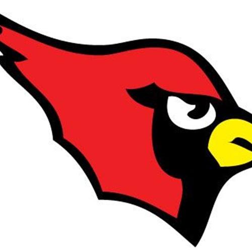 Mentor High School - Boys Varsity Football