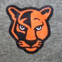 North Pitt High School - North Pitt Panthers
