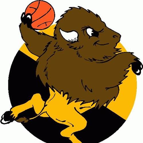 Wichita Southeast High School - Girls Varsity Basketball