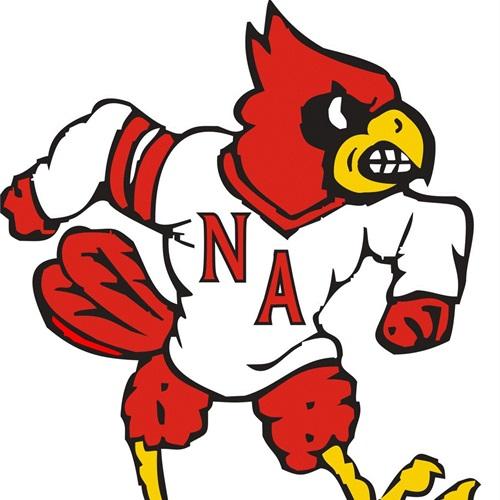 North Andrew High School - Boy's JV Basketball