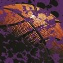 Hot Springs County High School - Boys' Varsity Basketball