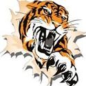 North Penn / Mansfield High School - Girls' Varsity Basketball