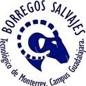 Instituto Tecnológico de Monterrey  - Campus Guadalajara - Instituto Tecnológico de Monterrey  - Campus Guadalajara Men's Basketball
