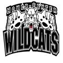 Homer-Center High School - Boys Varsity Football