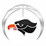 Bethel Park High School - Boys Varsity Basketball