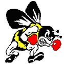 Brecksville-Broadview Heights High School - Boys Varsity Football