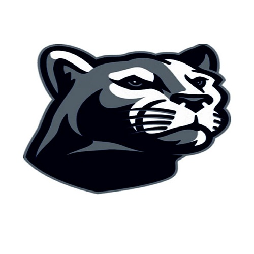 Austin High School - Panther Varsity Football