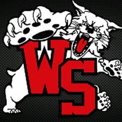 Westerville South High School - Boys' Varsity Volleyball