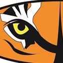 Lake City High School - Boys' Varsity Basketball - New