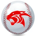 Cypress Springs High School - Boys Varsity Baseball