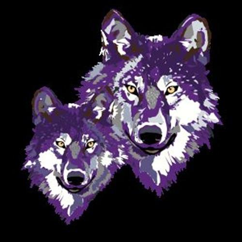 Johnson High School - Wolfpack Football