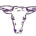 Forsyth High School - Boys Varsity Football