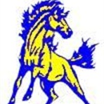 Schlagle High School - Boys Varsity Basketball