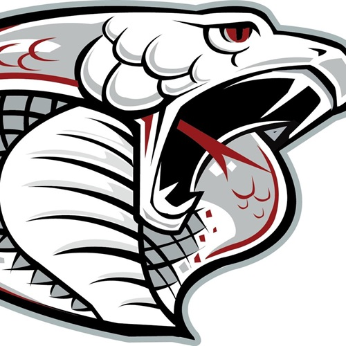 Triton High School - Boys Varsity Basketball