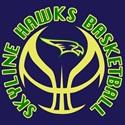 Skyline High School - Varsity Boys Basketball