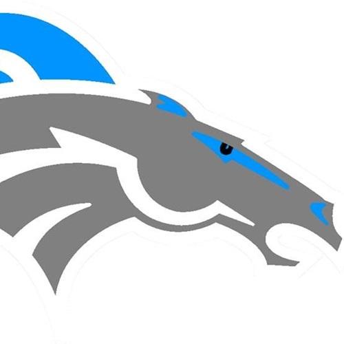 Comstock High School - Comstock Varsity Football