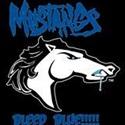 Hazel Crest Mustangs - Pee Wees