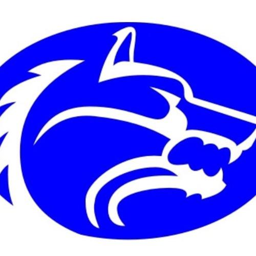 Wolfe City High School - Boys' Varsity Basketball
