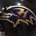 Hampstead Ravens - Hampstead Ravens 6-8 (2015) & 7-9 (2016)
