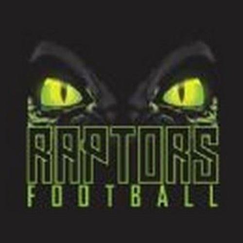 Raptors - RAPTORS SILVER