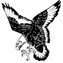 Mississinawa Valley High School - Mississinawa Valley Varsity Football