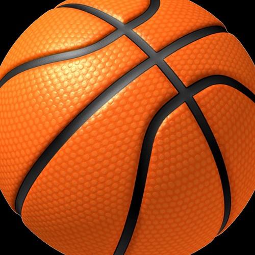 Irvin High School - Girls' Freshman Basketball