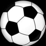 South St. Paul High School - Girls Varsity Soccer