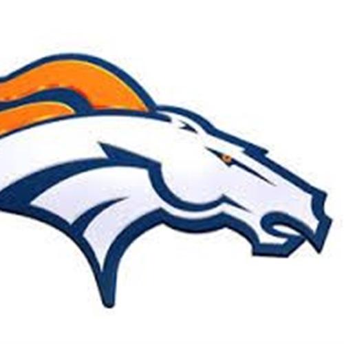 Brandon Broncos - Brandon Broncos 2016