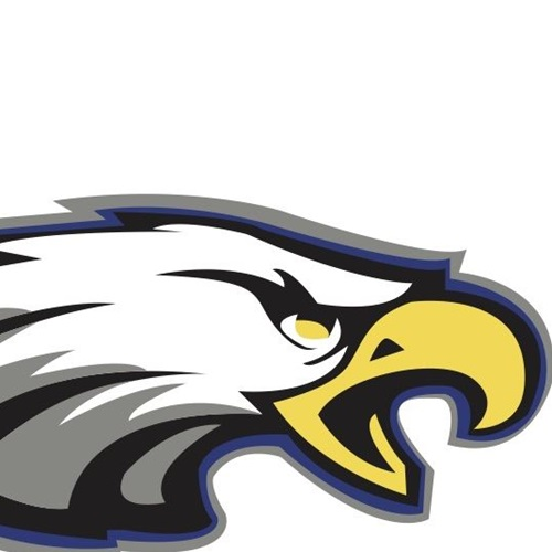 Sandburg High School - Sophomore Football