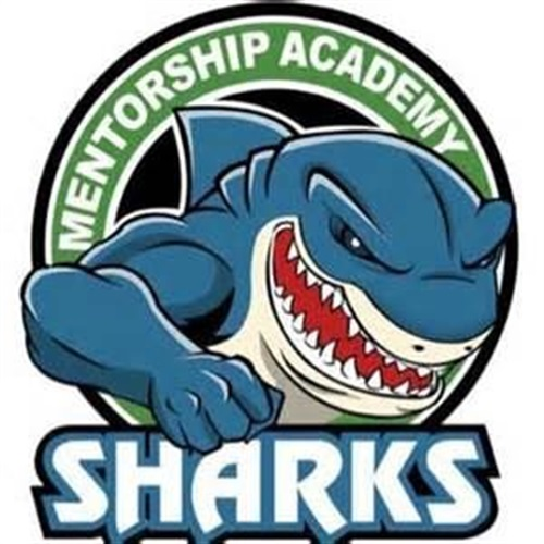 Mentorship Academy High School - Boys' Varsity Basketball