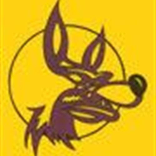 Karlskoga Wolves - Karlskoga Wolves U17/U19