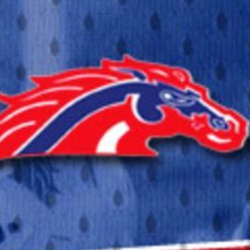 Broncos - JV Silver