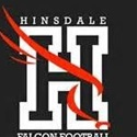 Hinsdale Falcons -BGYFL - Hinsdale Falcons - 93 Silver