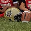 Lake Villa Township Timberwolves -TCYFL - BIG 10 Bantam