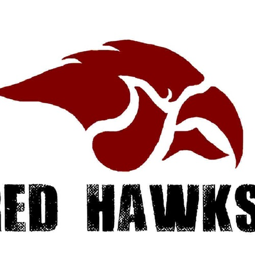 Cedar Springs High School - Girls' Varsity Volleyball