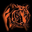 Belleville High School - JV Boys Basketball
