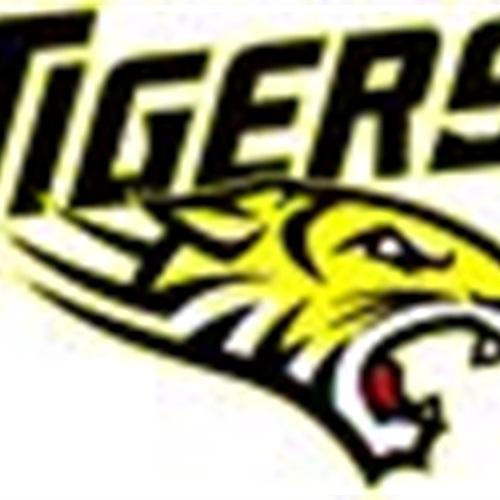 Deer Park Tigers - 2016 PeeWee