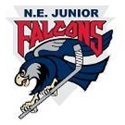 New England Jr Falcons - '04 Tier 1