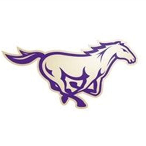 Central Arkansas Christian High School - Boys Basketball